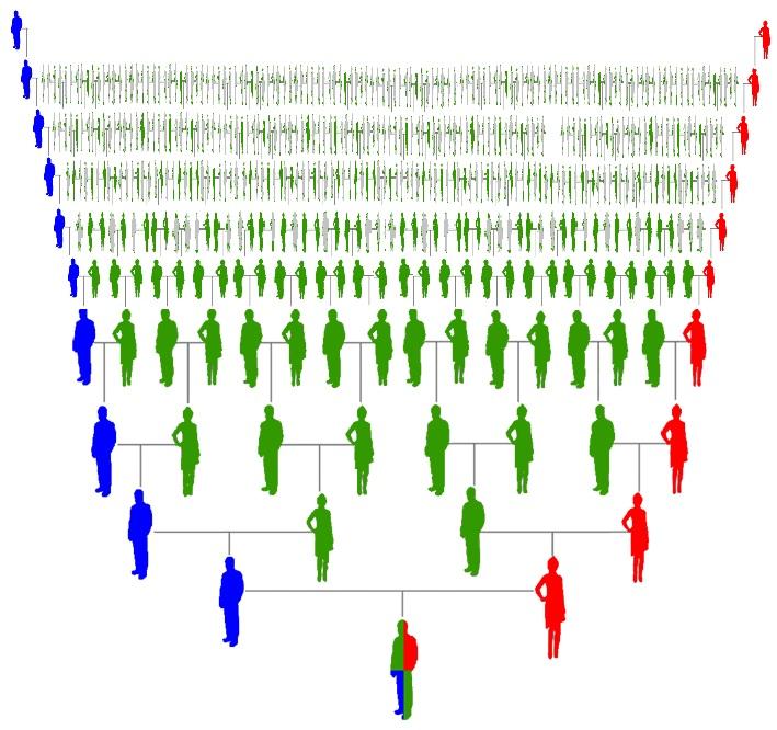DNA onderzoek mogelijkheden